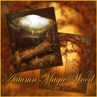 Autumn Magic Wood