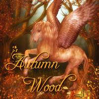 Autumn Wood 2