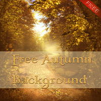 Autumn Background Free