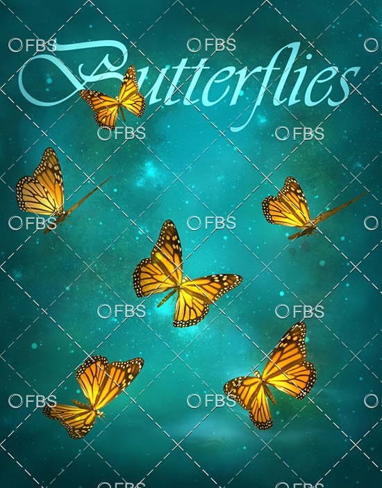 Butterflies png + Brushes