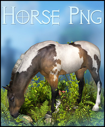 Horse 2 PNG
