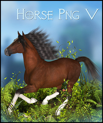 Horse 5 PNG