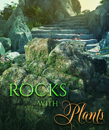 Rocks With Plants