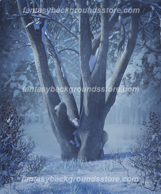 Winter Forest Backgrounds