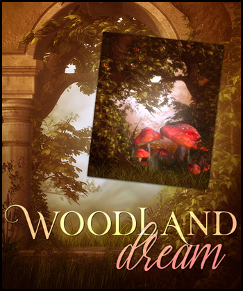 Woodland Dream 2