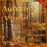 Autumn Backgrounds Free