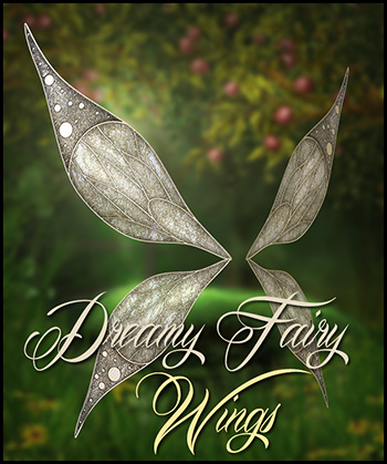Dreamy fairy wings