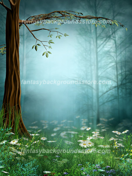 Fairy backgrounds fairy wood 2 - Enchanted garden collection free download ...