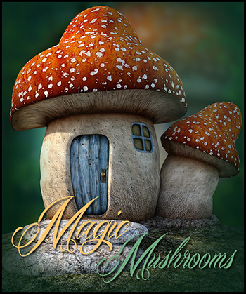 Magic Mushrooms PNG