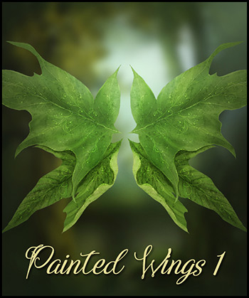 Painted Wings Vol.1