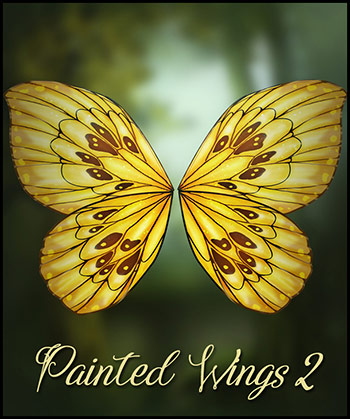 Painted Wings Vol.2
