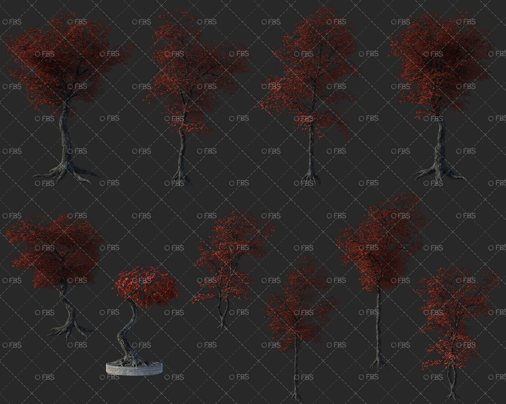 Autumn Trees Png
