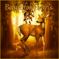 Beautiful Fawn's