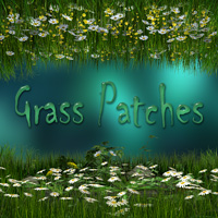 Grass Patches