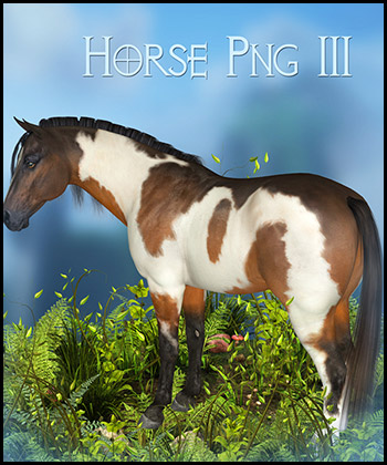 Horse 3 PNG