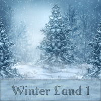 Winter Land 1
